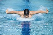 dynamic and fit swimmer in cap breathing performing the butterfly stroke  in swimming pool