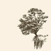 Lonely tree on cliff, Hand drawn Vector illustration