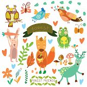 foto of nightingale  - Vector Set of Cute Woodland and Forest Animals - JPG
