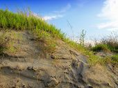 Dunes with Beachgrass