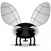 black and white illustration of a baby fly
