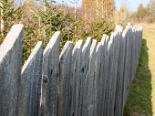 stock photo of stockade  - Old wooden fence with coniferous trees behind it - JPG