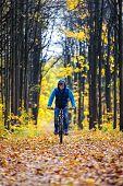 Cyclist autumn forest