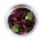 Ripe Mulberry Berries