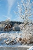 Winter Day In The Country