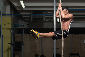 pic of roping  - Fitness Rope Climb Exercise In Fitness Gym Workout - JPG