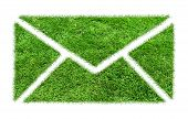 pic of greenery  - Symbol grass email - JPG