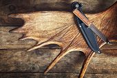 stock photo of antlers  - Moose antler with hunting knives on wooden background - JPG