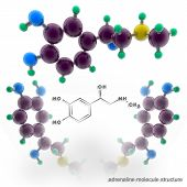 image of neurotransmitter  - Adrenalin molecule structure - JPG