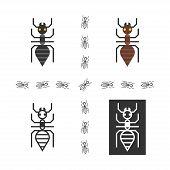 image of ant  - Black ant logo set - JPG