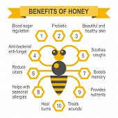 stock photo of honey bee hive  - Healthy honey infographic placard - JPG