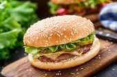 pic of burger  - Chicken burger with pickles - JPG