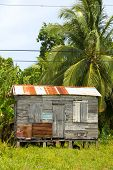 Ramshackle Zinc Clapboard House Jungle Corn Island Nicaragua