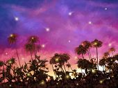 image of fireflies  - Looking up to flowers and fireflies against beautiful sunset sky - JPG