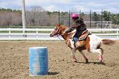 foto of barrel racing  - A young teenage girl turns around a barrel and races to the finish line - JPG