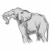 Elephant Sketches In Color And Lines. Simple Elephants On White Background. Cute Elephant. Vector Il poster