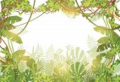 Jungle Tropical Background. Rainforest With Tropic Leaves And Liana Vines. Nature Landscape With Tro poster