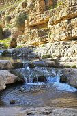 stock photo of hydrophytes  - Shallow stream in droughty mountains of Israel - JPG