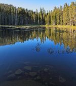Early clear autumn morning. The superficial dark blue lake surrounded by pines in Yosemite national