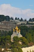 foto of church mary magdalene  - Golden domes of the Church of Mary Magdalene and cypresses - JPG
