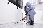 Pest Control Worker Spraying Pesticide On White Cabinet poster