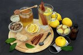 Healing flu and cold remedy ingredients with echinacea herb, eucalyptus oil, fresh ginger, lemon fru poster