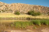 pasture lake, water plants and sandstone cliffs