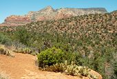Sedona buttes and landscape