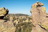 Chiricahua National Monument canyon of rock hoodoos, forest and yellow moss poster