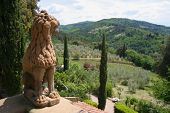 foto of mona lisa  - the rolling hills of tuscany viewed from the vignamaggio winery and hotel with a sculptured guardian lion - JPG