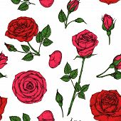 Roses Pattern. Red Blossom Rose Flowers Bouquet. Floral Seamless Vector Drawing Pattern. Illustratio poster