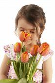 Girl With Tulipa