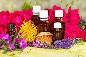 stock photo of naturopathy  - Essential oil with roses and herbs for spa