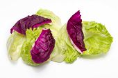 foto of iceberg lettuce  - Purple cauliflower - JPG