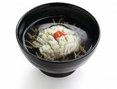hamo-wan, clear broth with hamo(pike conger eel) and junsai(water shield), japanese cuisine