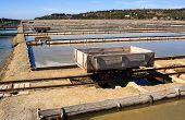 View Of Salt Evaporation Ponds In Secovlje