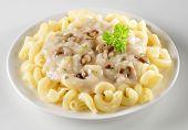 Pasta With Creamy Mushroom Sauce poster