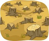 Illustration of Tree Stumps showing Deforestation