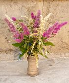 stock photo of meadowsweet  - still life bouquet of astilbe and meadowsweet - JPG