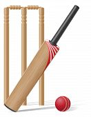 Set Equipment For Cricket Vector Illustration