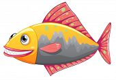 Illustration of a colorful big fish on a white background