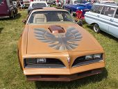 Pontiac Trans Am Copper