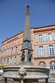 Fountain in Toulouse