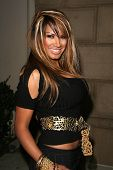 Traci Bingham  at the Summer Stars Party hosted by InTouch Weekly and ISH. Social Hollywood, Hollywo