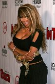 Traci Bingham  at the Summer Stars Party hosted by InTouch Weekly and ISH. Social Hollywood, Hollywood, CA. 05-22-08