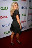 Emily Proctor  at the CBS, CW and Showtime Press Tour Stars Party, Boulevard3, Hollywood, CA. 07-18-