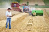 picture of supervision  - Young landowner with laptop supervising harvesting work - JPG