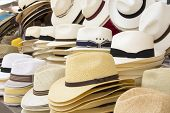 stock photo of panama hat  - A lot of straw men - JPG