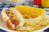 Hot Dog With Corn On The Cob