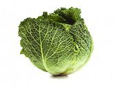 Fresh Savoy Cabbage isolated on white background